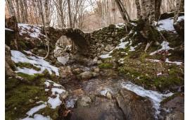 Ruscello invernale